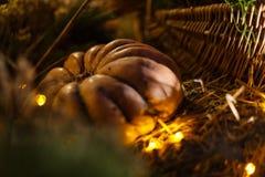 La calabaza adornó la Navidad con las luces en la noche Imagenes de archivo