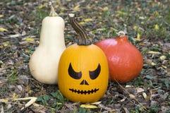 La calabaza lista para la celebración de Halloween, compone la cara fotografía de archivo libre de regalías