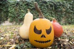 La calabaza lista para la celebración de Halloween, compone la cara foto de archivo