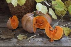 La calabaza, nueces, wattled la cesta y la rama del otoño Fotografía de archivo libre de regalías