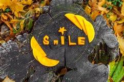 La calabaza tallada da a todo el mundo al día de la sonrisa Fotografía de archivo
