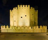 La Calahorra de Torre De de Cordoue l'espagne Photographie stock libre de droits