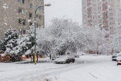 La calamidad de la nieve en Bratislava Eslovaquia, nieve enorme forma escamas 30 de enero de 2015 Foto de archivo