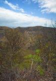 La Caldera de Bandama. Volcanic caldera on Gran Canaria, part of Tafira protected landscape royalty free stock photos