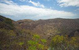 La Caldera de Bandama. Volcanic caldera on Gran Canaria, part of Tafira protected landscape stock photo