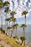 La Californie Photo stock