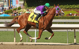La Californie Chrome gagne le San Felipe Stakes Photographie stock libre de droits