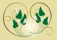 La calla fleurit avec le décor des spirales sur un fond clair Photographie stock libre de droits