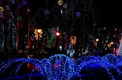 La calle de la noche en la ciudad se adorna con una guirnalda multicolora luminosa en árboles con la iluminación Globa del parque fotos de archivo libres de regalías