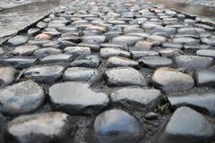 La calle mojada del coblestone sceen Imagenes de archivo