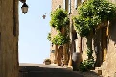 La calle romántica con las casas viejas adornó las flores florecientes en pequeño pueblo cerca del lago geneva, Suiza Imagenes de archivo