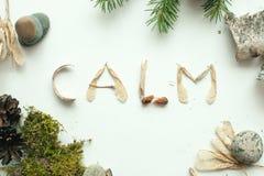 La calma di consapevolezza disinserisce il concetto, calma di parola dal materiale naturale della foresta fotografie stock