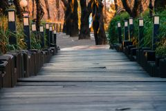 La calzada abajo de la colina es una escalera de madera con las bombillas y Foto de archivo libre de regalías