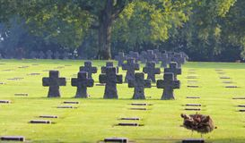 La Cambe German Military Cemetery, Normandy Royalty Free Stock Photography