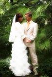 La caminata de recienes casados fotografía de archivo