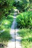 La caminata en el parque Imagenes de archivo