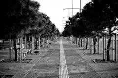 La caminata grande Foto de archivo
