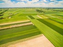 La campagna ed il campo veduti dal ` s dell'uccello osservano la vista Campi del raccolto che allungano all'orizzonte Immagine Stock