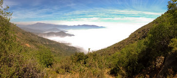 La Campana National Park, Chile Royalty Free Stock Image