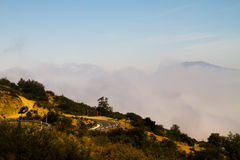 La Campana National Park, Chile Stock Photos