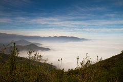 La Campana National Park, Chile Royalty Free Stock Images
