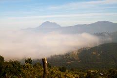 La Campana National Park, Chile Stock Images