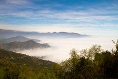 La Campana National Park, Chile Stock Image