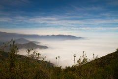 La Campana National Park, o Chile imagens de stock royalty free