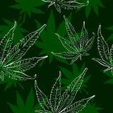 La cannabis copre di foglie modello senza cuciture di vettore Fotografia Stock Libera da Diritti