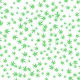 La cannabis verde lascia il fondo Fotografia Stock Libera da Diritti