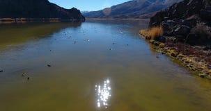 La cantidad y la lente aéreas del abejón señalan por medio de luces sobre un lago 4k 24fps almacen de video