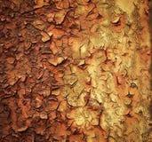 La capa de pintura envejecida en el hierro imagen de archivo