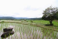 La capanna dell'agricoltore Fotografie Stock Libere da Diritti
