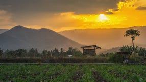 La capanna dell'agricoltore sul giardino agricolo in campagna Tailandia e nella luce splende il tramonto Immagine Stock