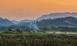 La capanna dell'agricoltore sul giardino agricolo in campagna Tailandia e nella luce splende il tramonto Fotografia Stock Libera da Diritti