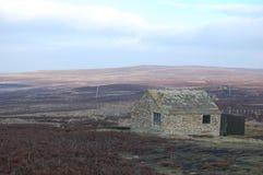 La capanna della fucilazione, urogallo attracca, Blanchland Northumberland Fotografia Stock Libera da Diritti