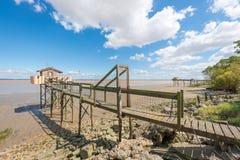 La capanna di pesca sui trampoli ha chiamato Carrelet, l'estuario di Gironda, Francia Immagini Stock Libere da Diritti