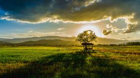 La capanna e l'albero dell'agricoltore sul giardino agricolo in campagna Tailandia e nella luce splende il tramonto Immagini Stock
