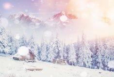 La capanna nelle montagne nell'inverno, fondo con una certa morbidezza evidenzia e la neve si sfalda Carpathians, Ucraina Immagine Stock