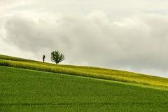 La capilla del borde de la carretera y la rabina floreciente cercana del árbol solitario colocan adentro Imagen de archivo libre de regalías