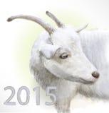 La capra è il simbolo di 2015 Fotografia Stock Libera da Diritti
