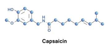 La capsaicina è un componente attivo del peperoncino rosso illustrazione di stock