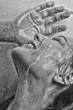 La cara de la mujer en la sonrisa de cristal mojada Imágenes de archivo libres de regalías