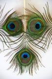 La cara de la pluma Imágenes de archivo libres de regalías