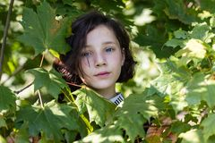 La cara de una muchacha bastante adolescente entre licencia del arce foto de archivo