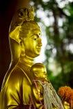 La cara del oro de Guan Yin fotos de archivo libres de regalías