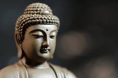 La cara del zen del Buda-estilo en fondo natural Fotografía de archivo libre de regalías