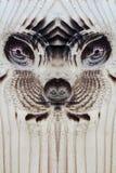 La cara extranjera o animal en el tablero de madera Imagen de archivo