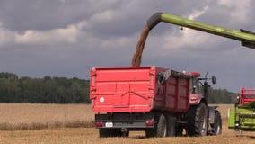 La carga de máquina de la agricultura cosechó el grano en el remolque del camión almacen de metraje de vídeo