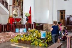 La Caridad del Cobre di Virgen de Immagini Stock Libere da Diritti